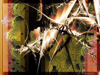 Renata Spiazzi, Orderly Chaos, NanoArt 2006